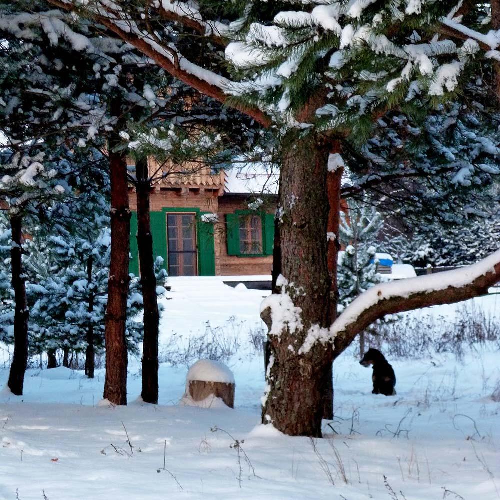 zima w Gościńcu Szuwary