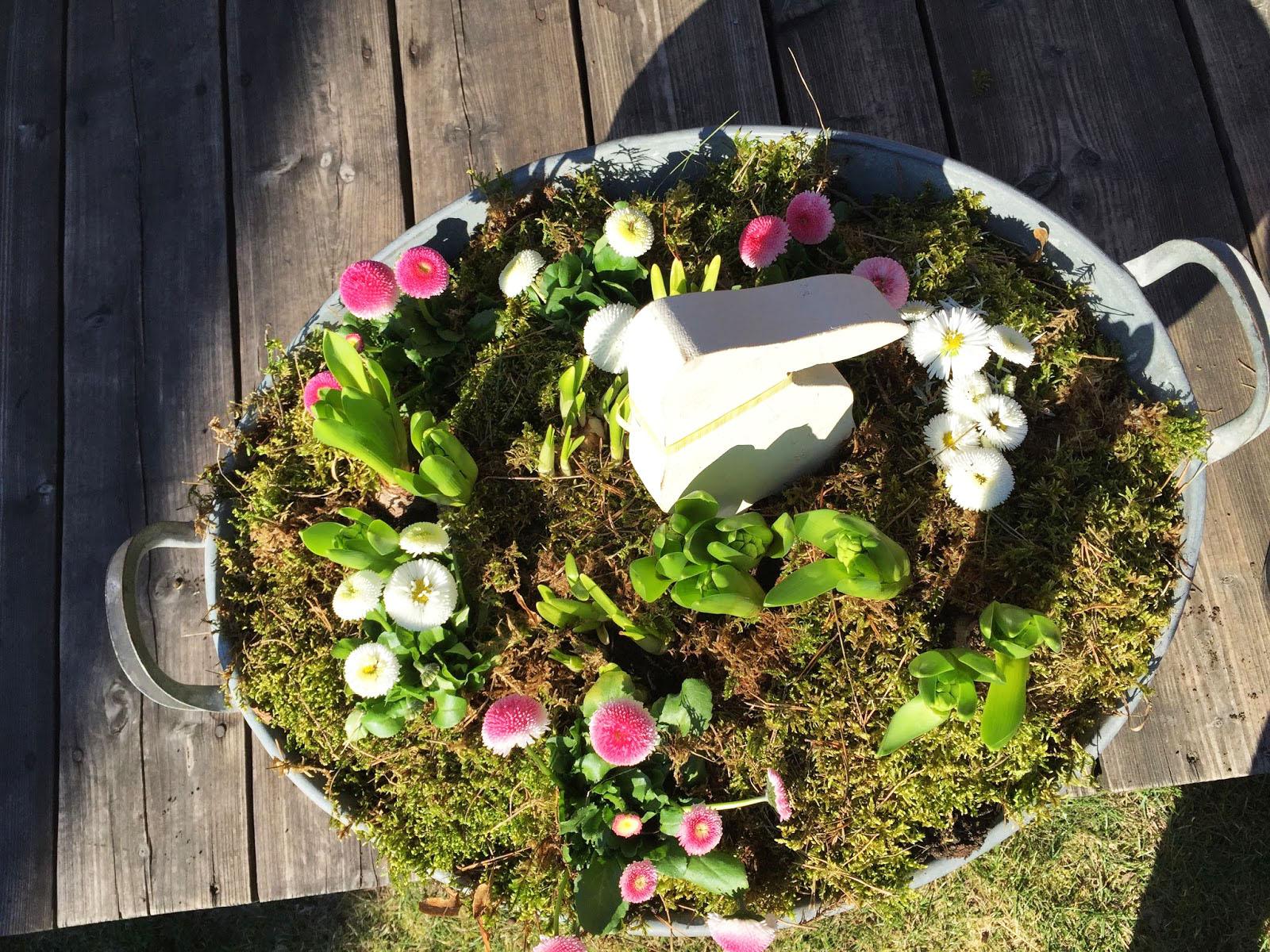 Wielkanoc w Szuwarach