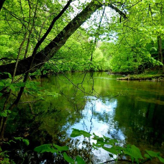 rzeka Krutyń