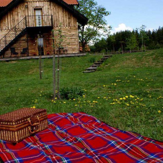 Piknik w Szuwarach