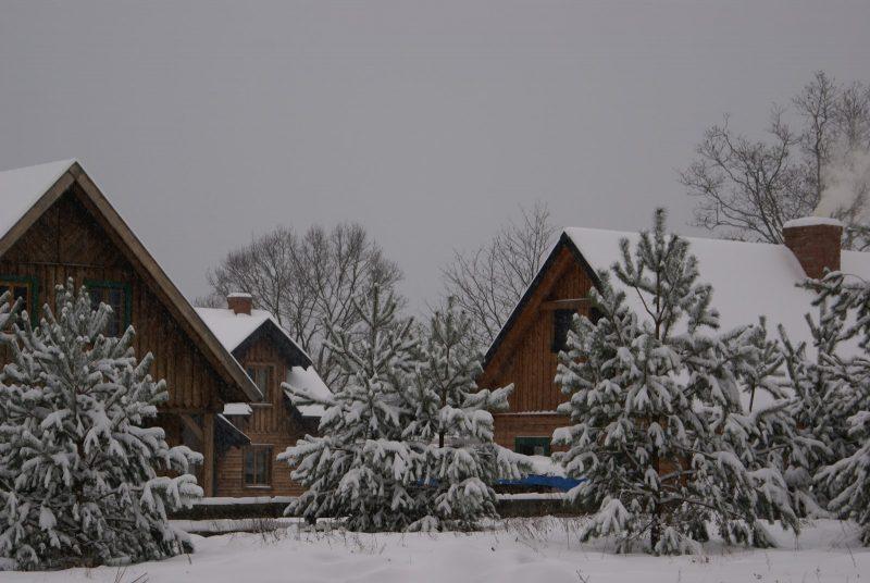 Zima w Szuwarach